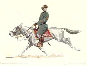 China Marine Mounted