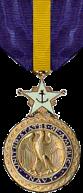 Navy DSM